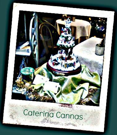 alberello Caterina Cannas
