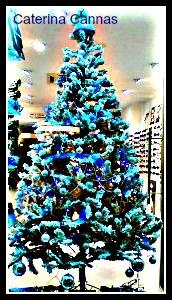 albero blu Caterina Cannas
