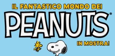 il fantastico mondo dei peanuts