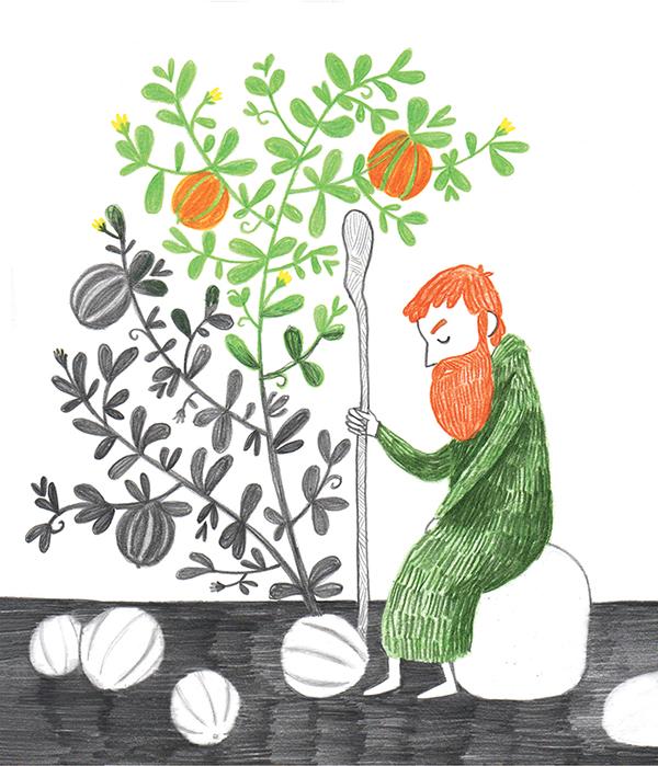 illustrazione di Giovanni Frasconi