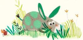 Il piccolo asinello verde (Lapis)