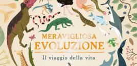Meravigliosa evoluzione (Editoriale Scienza)